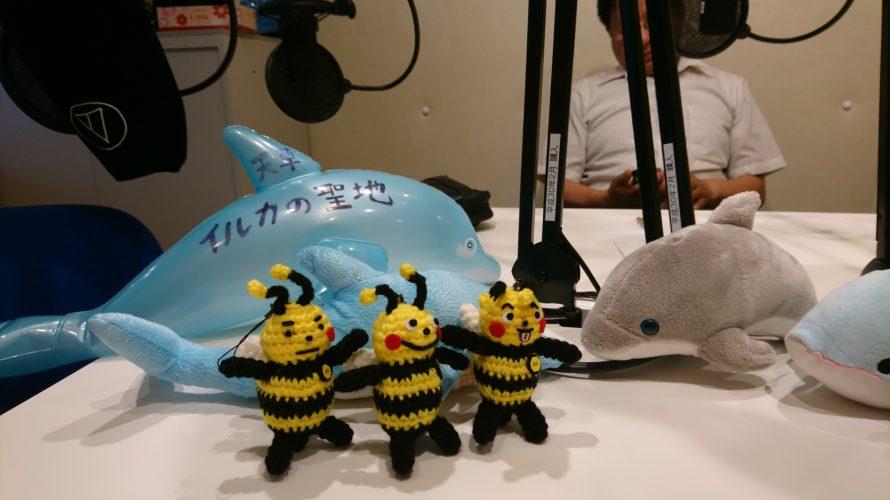 6/24 天草ローカルラジオ収録