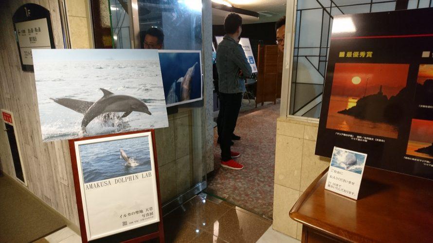 イルカの聖地 写真展 入口