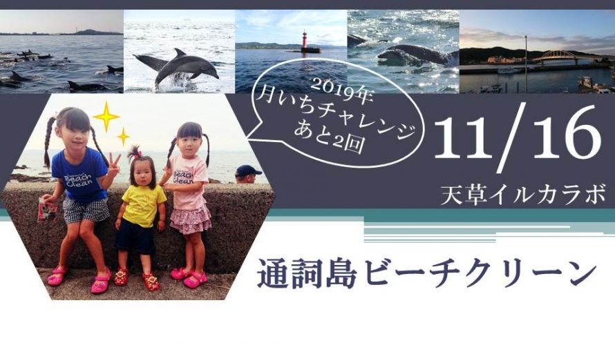 11月のビーチクリーンは 16日の開催です