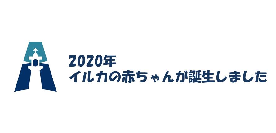 2020年 ファーストベビー確認!