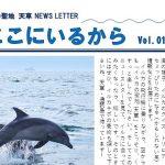 イルカの飛行機、天草エアラインとコラボ実現☆2021.7.1 祝!イルカラボ3周年☆